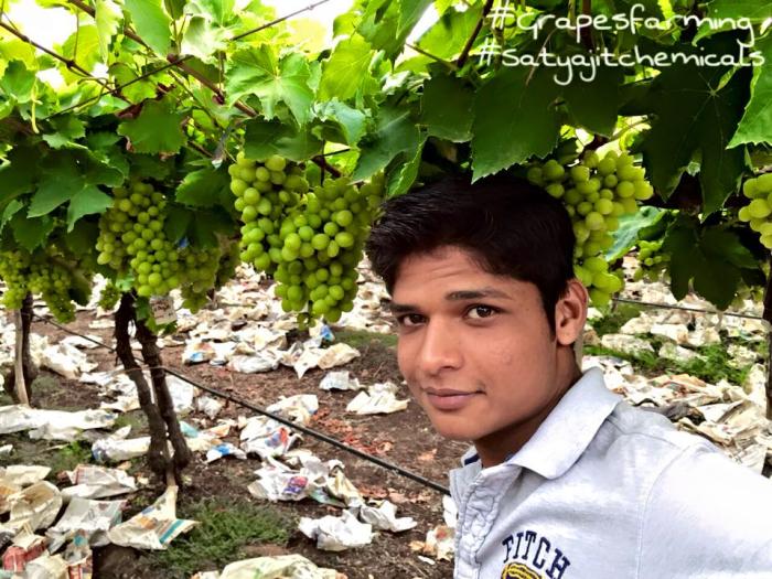 Vishwajit More